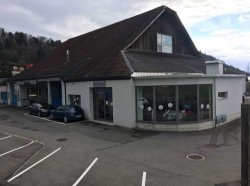 Garage Rast LG GmbH, Ebikon